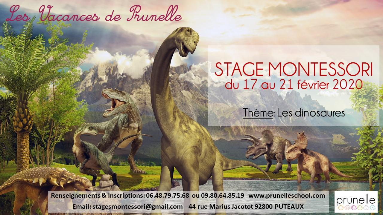 Flyer Stage Montessori Fevrier 2020